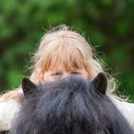 1800 руб. за урок! - Школа верховой езды в Москве. Конные уроки для начинающих. Конные занятия для имеющих опыт. Прогулки на лошадях.